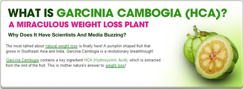 The Magic Garcinia Cambogia