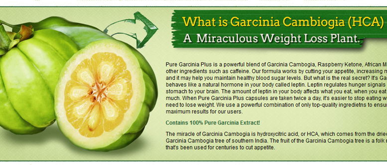 garcinia cambogia also possesses antiseptic properties