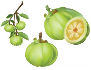 health benefits of garcinia
