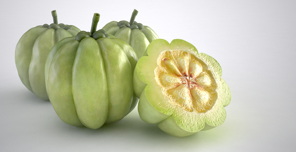 incredibly popular ingredient in Garcinia Cambogia