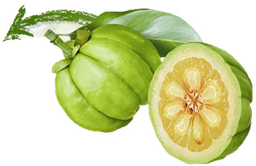 garcinia cambogia on tv