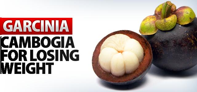 garcinia for losing weight