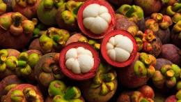 Best-Diet-With-Garcinia-Cambogia