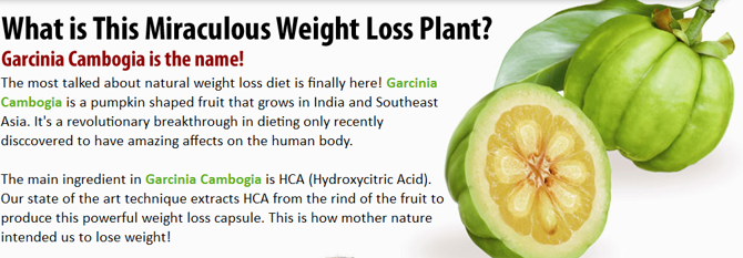 HCA : the most potent source in garcinia cambogia