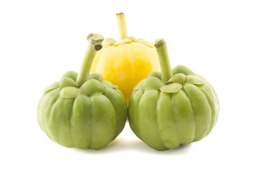 HCA is the main driver for Garcinia Cambogia